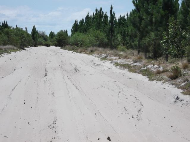 Bribie Island Northern Access Track